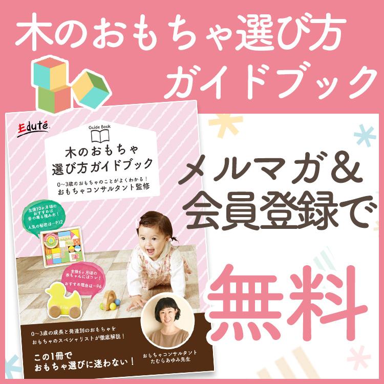木のおもちゃ選び方ガイドブック無料でプレゼント!
