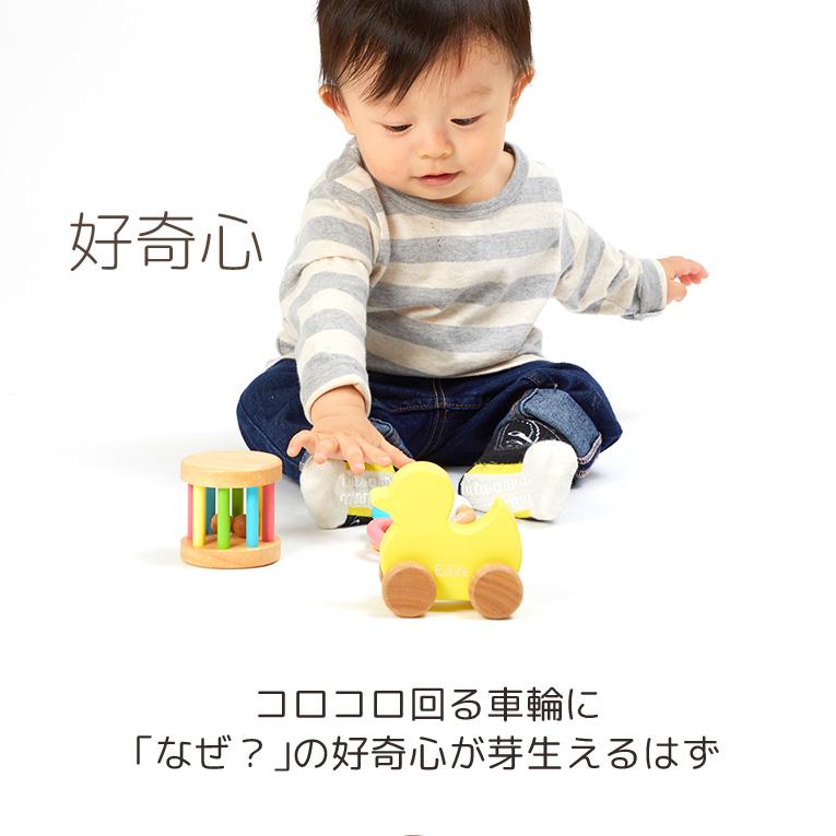 好奇心を育むおもちゃ