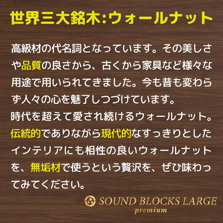 SOUNDブロックスlargePREMIUM