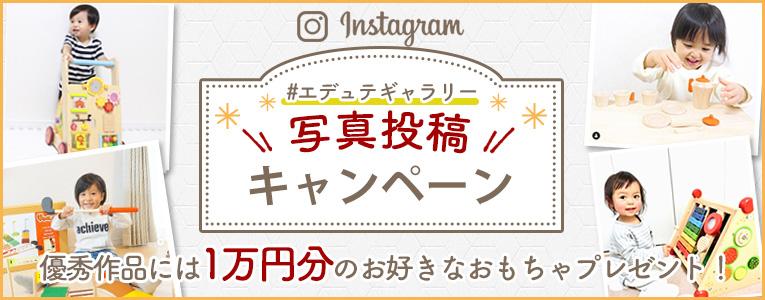 /ig_campaign.jpg