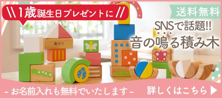 1歳誕生日プレゼント人気No.1SOUNDブロックスlarge