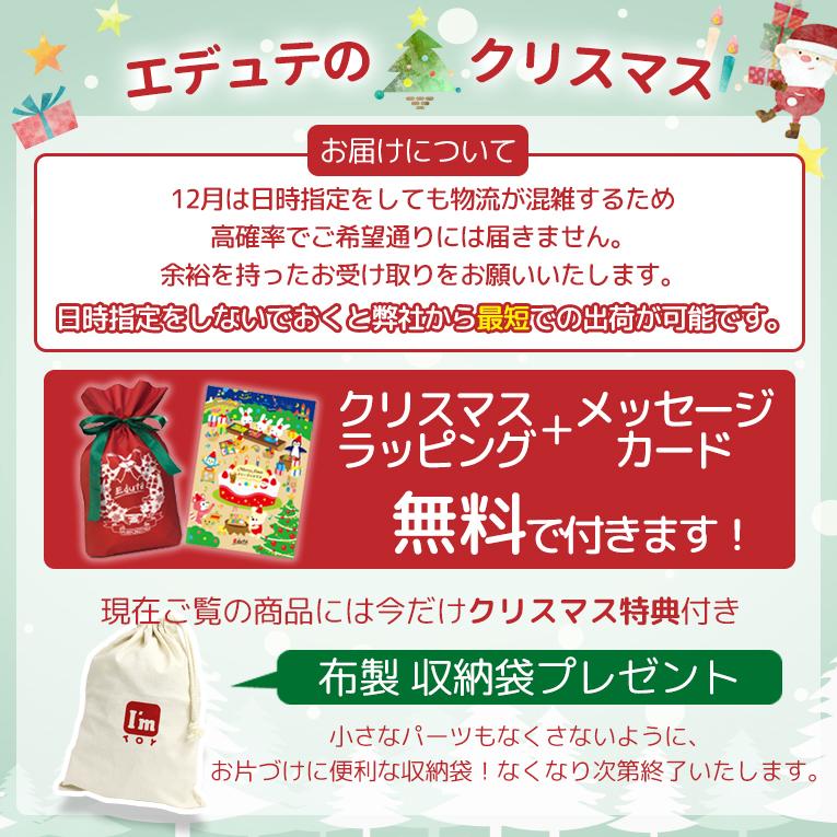 こちらの商品はクリスマスだけの特典つき!今しかもらえないパーツが付いてきます!