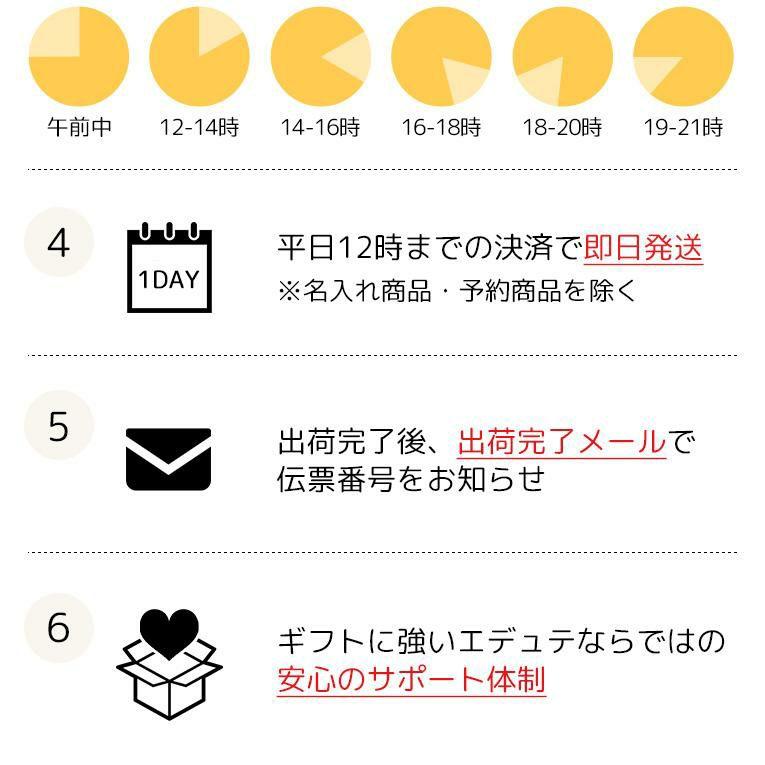 ブルーダー MB 救急車 フィギュア付き<3歳>Bruder ブルーダー