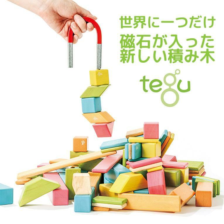 tegu 14ピース ブロッサム<0歳1歳2歳>tegu テグ